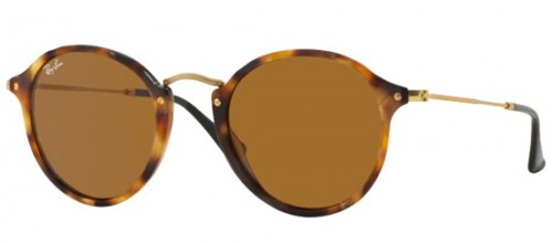 Ray-Ban  ROUND FLECK RB 2447 1160